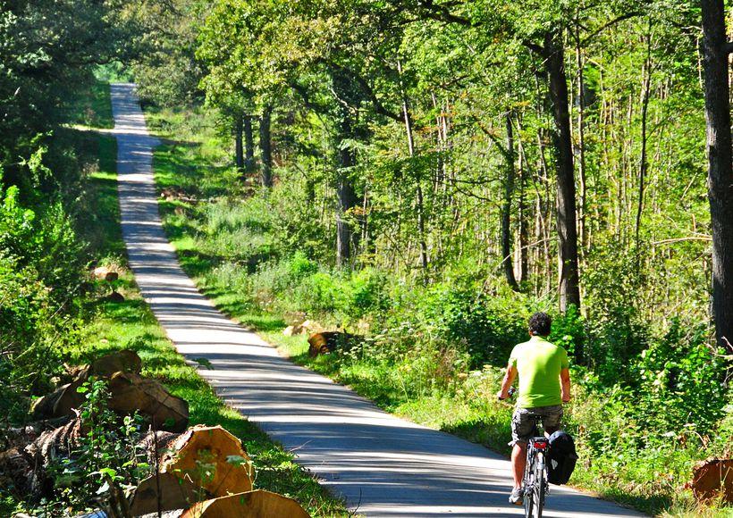 Erop uit met de fiets