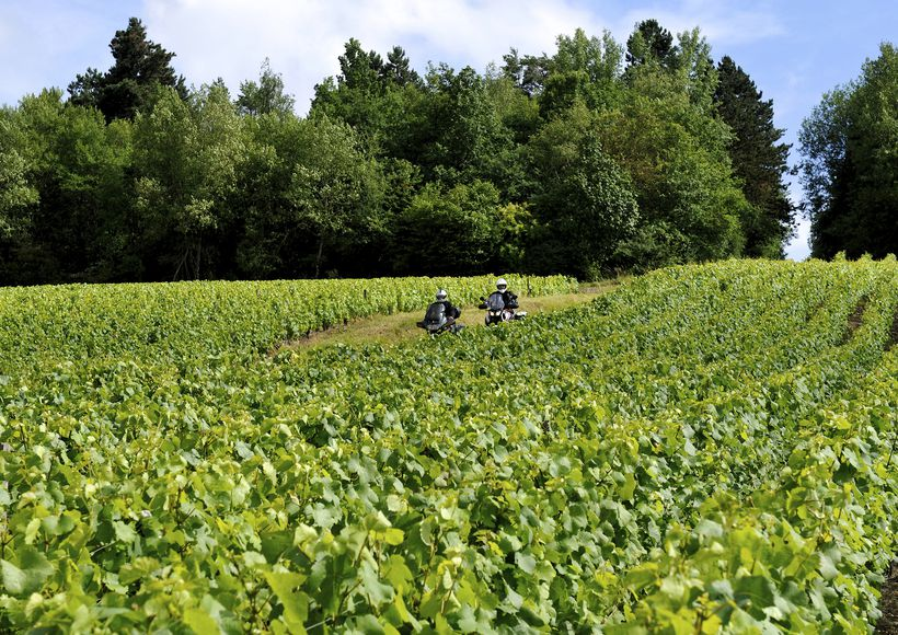 Motortocht: Tussen de Marne en de wijngaarden